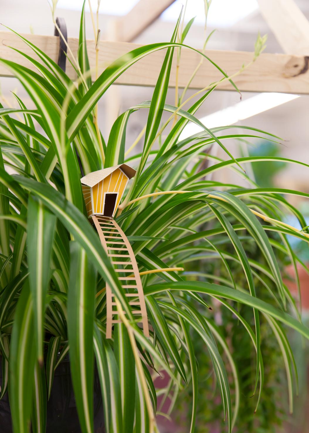 Urban Jungle bij Plantaardig in Middelburg