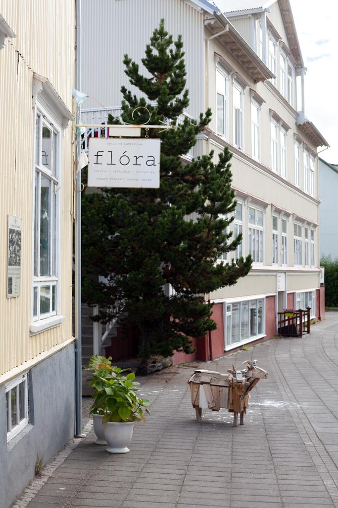 Dit zijn de mooiste winkels van IJsland