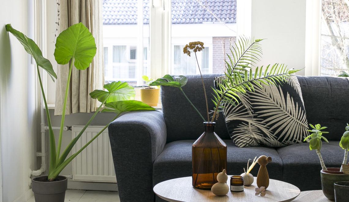 4x tips voor duurzaam wonen