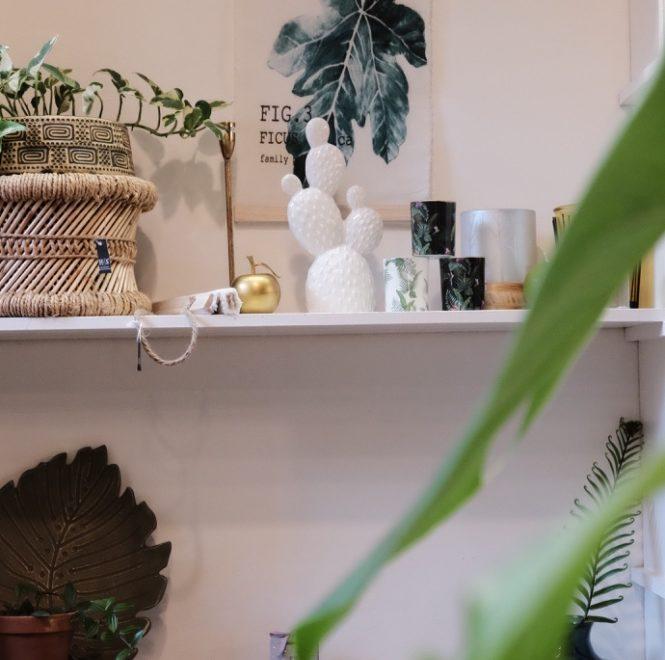 Winkelen in Middelburg: een stad vol duurzame schatten en lokale glorie
